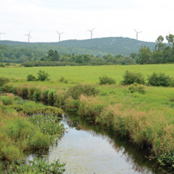Thorndike votes for strict wind ordinance