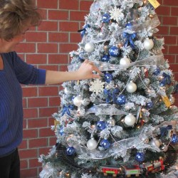 Children will benefit from Christmas tree sales