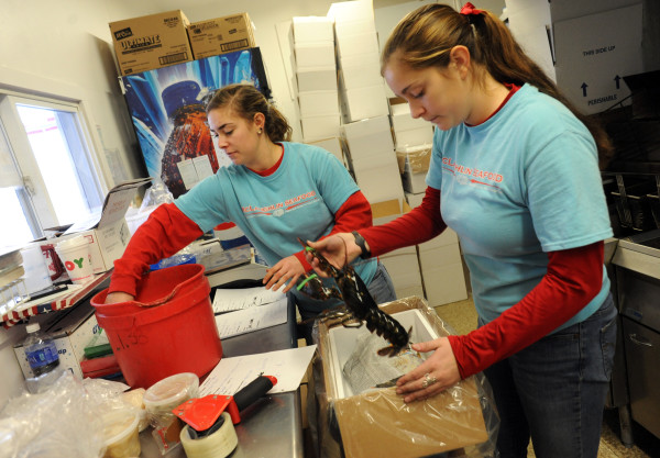 Katie (left) and Mikayla McLaughlin package up live lobsters at McLaughlin Seafood in Bangor to be overnight shipped to customers around the country. They are sending over 100 boxes containing more than 300 live lobsters and 100 cooked lobsters.