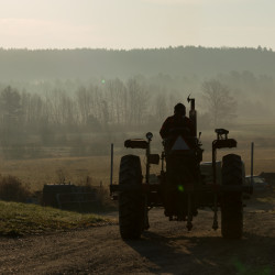 """A farmer works on a November morning on a Maine farm in this image seen in """"New Growth."""""""
