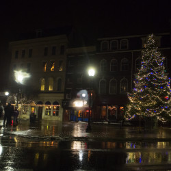 Village Tree Festival set for downtown Orono