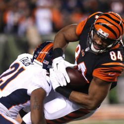Bengals stop Brady, hand Patriots first loss
