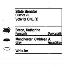 An image from a disputed ballot in the Senate District 25 race.