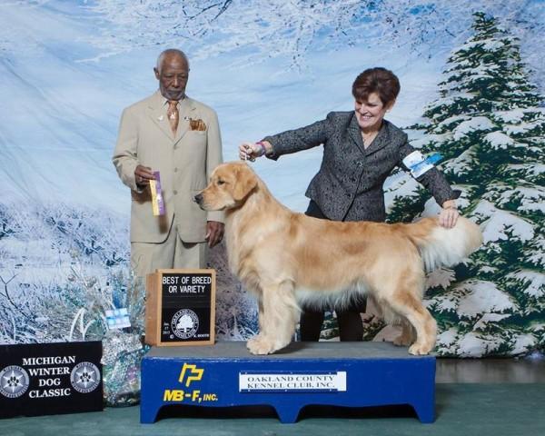 Portland Kennel Club Dog Show Results