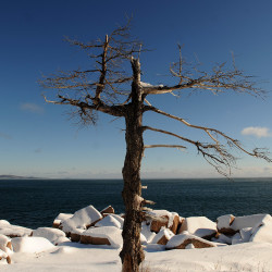 Winter takes hold at Acadia National Park on Mount Desert Island.