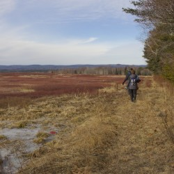 Walk slated at Riverview Hayfields Preserve in South Thomaston
