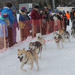 2013 Wilderness Sled Dog Race cancelled due to lack of snow
