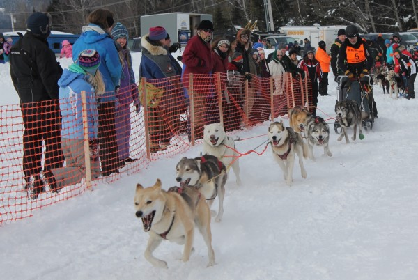 Peter Franke of Durham, New Hampshire, takes off for the 30-mile event in Saturday's Wilderness Sled Dog Race in Greenville.