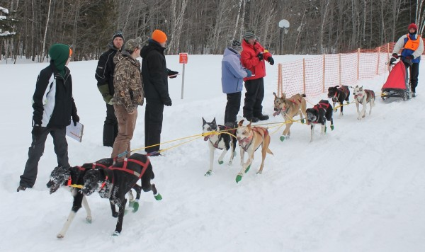 Rico Portalatin of Milo brings his team across the finish line first in the 30-mile event in Saturday's Wilderness Sled Dog Race in Greenville.