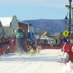 Sled dog season kicks off with howling start in Westbrook