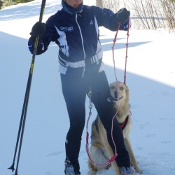 Maine mushers enjoy world championships