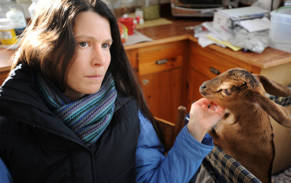 Daniella Tessier with a baby goat in the kitchen of her home at the Peace Ridge Sanctuary in Penobscot. Tessier is the director and shelter manager at the sanctuary.
