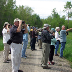 Festivals for novice, experienced birders alike