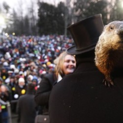 Special Saturday story time offered at Bar Harbor library for Groundhog Day