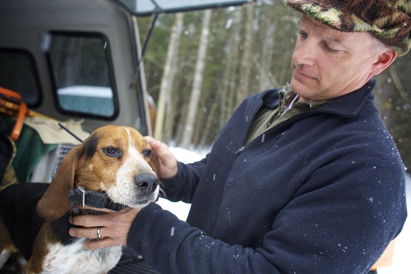 Off-duty game warden Jim Fahey fits a radio collar on his dog Chum before heading out to hunt snowshoe hares in Maine.
