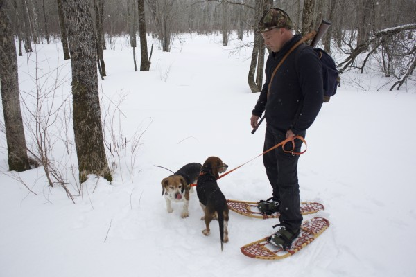 Off-duty game warden Jim Fahey takes his dogs out to hunt snowshoe hares in Maine.