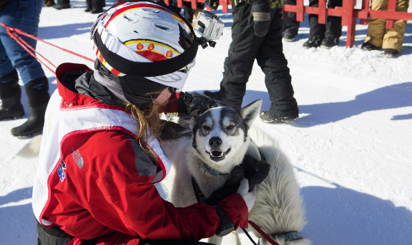 Lara Renner tells one of her dogs they did a good job after finishing the Pepsi Bottling & Allen's Coffee Flavored Brandy Can-Am Crown 30 in Fort Kent Saturday. Renner crossed the finish line second.