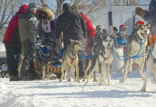 Musher Amy Dugan of Mountain Ridge Kennels in Shirley prepares to take off at the start of the Can-Am Crown 30-mile sled dog race Saturday morning in Fort Kent.