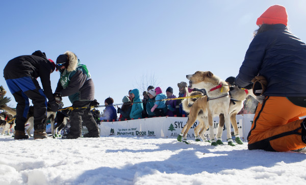 Ashley Patterson (second from left) double checks her dogs before the start of the 250-mile Can-Am Crown International dog sled race starting in Fort Kent Saturday.
