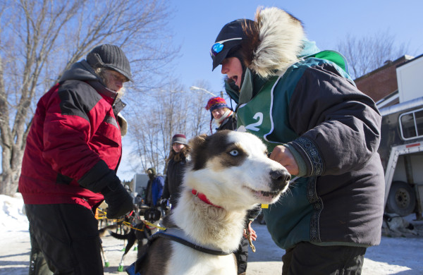 Ashley Patterson (right) lines up her 12 Alaskan huskies before the start of the 250-mile Can-Am Crown International dog sled race starting in Fort Kent Saturday.