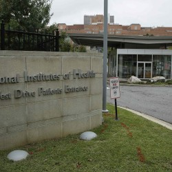 Man quarantined at N.Y. hospital, awaiting Ebola test results