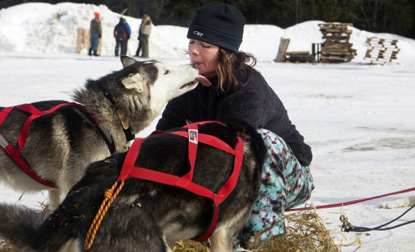 One of Becki Tucker's dogs gives her a kiss at the third check point of the 250-mile Can-Am Crown International dog sled race at Syl-Ver on Sunday.
