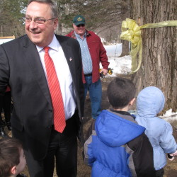 Baldacci keeps tradition of tapping maple tree
