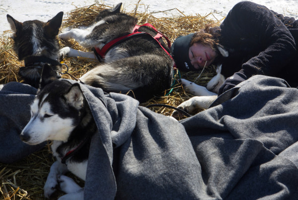 Becki Tucker takes a nap with her dogs at the third check point of the 250-mile Can-Am Crown International dog sled race at Syl-Ver on Sunday.