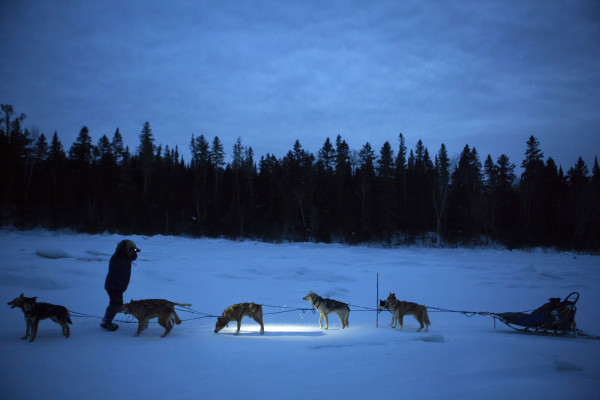 Andre Longchamps stops to check his team on the Allagash River during the 2015 250-mile Can-Am Crown International dog sled race while heading toward the fourth check point at Allagash on Sunday.