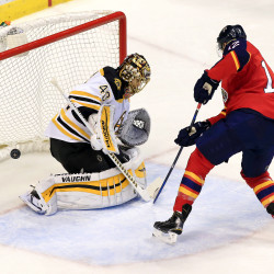 Bruins' backup goalie tames Panthers