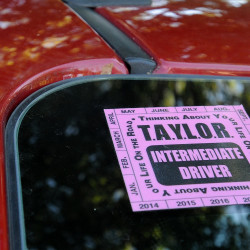Could a pink sticker save teenagers' lives? Parents take action after daughter's death in Bucksport crash