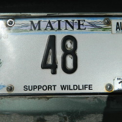 Maine loon plates free pass for state parks