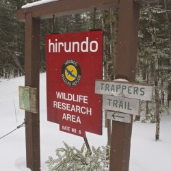 Winter hours at Hirundo Wildlife Refuge