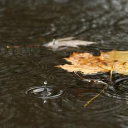 Midcoast Maine socked by rain