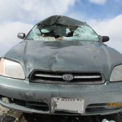 Haynesville man escapes injury in moose crash