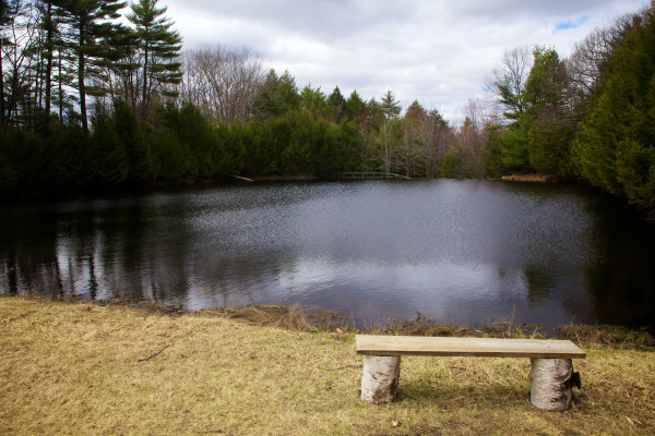Wind ripples across the water of Knight's Pond on Monday in Cumberland, where local land trusts hope to conserve a 215 acre parcel. Supporters held a press conference on Monday urging Gov. Paul LePage to release approved bond funds to seal the deal.
