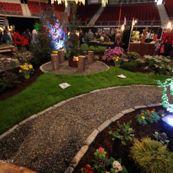 Revived Bangor Garden Show draws thousands of visitors