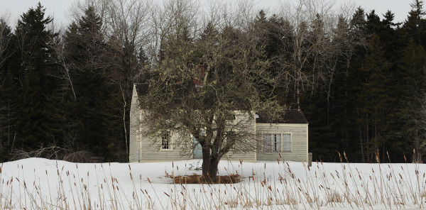 Many residents of Islesboro Island in Penobscot Bay are struggling with the lack of access to high-speed internet.