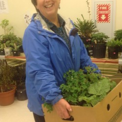 A customer at last year's Green Thumb Plant Sale in the Belfast Boathouse. The Belfast Garden Club is calling for donations to this year's sale.