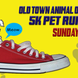Walk with the whole family and bring your best friend for just $15.  Proceeds benefit the Old Town area No-Kill animal shelter.