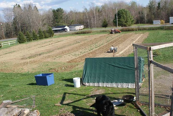 A view of a future garden on Fussing Duck Farm in Corinth.