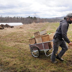 Cold, wet spring means slow start for farmers, gardeners