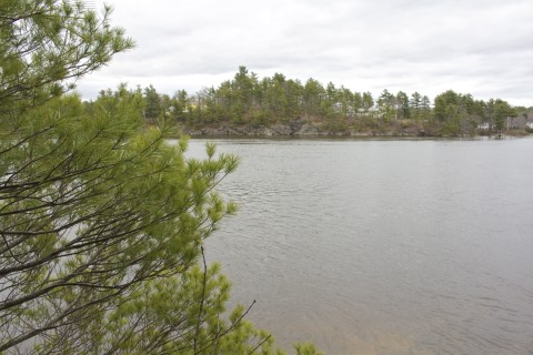 1-minute hike: Thorne Head Preserve in Bath | Act Out with Aislinn