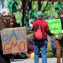 Protesters urge mandatory labeling for genetically modified food at a rally Saturday, May 23, 2015, in Portland.