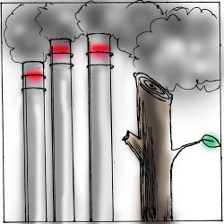 Mass. study: Wood power worse polluter than coal