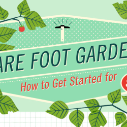 Here's everything you need to build a 'square foot garden' for $50