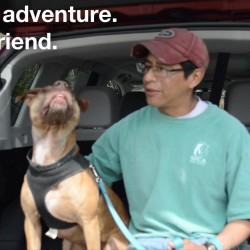 David Wells from SPCA of Hancock County sits with Meeka in the back of a Subaru Forester from Stanley Subaru