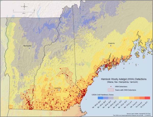 This map shows hemlock woolly adelgid detection.