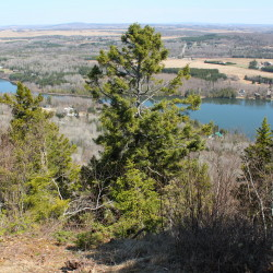Primary care practices to provide patients with 10,000 state park passes