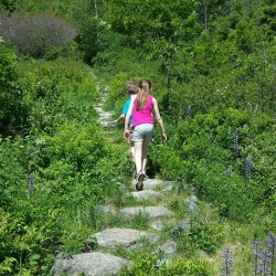 Hikes to try near Cobscook Bay State Park